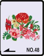 ausztrál virágok